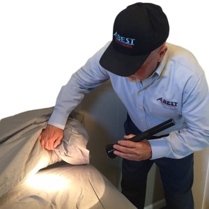 v1-bed bug inspection-2